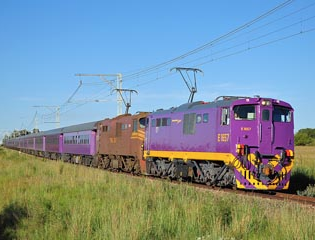 shosholoza train.png