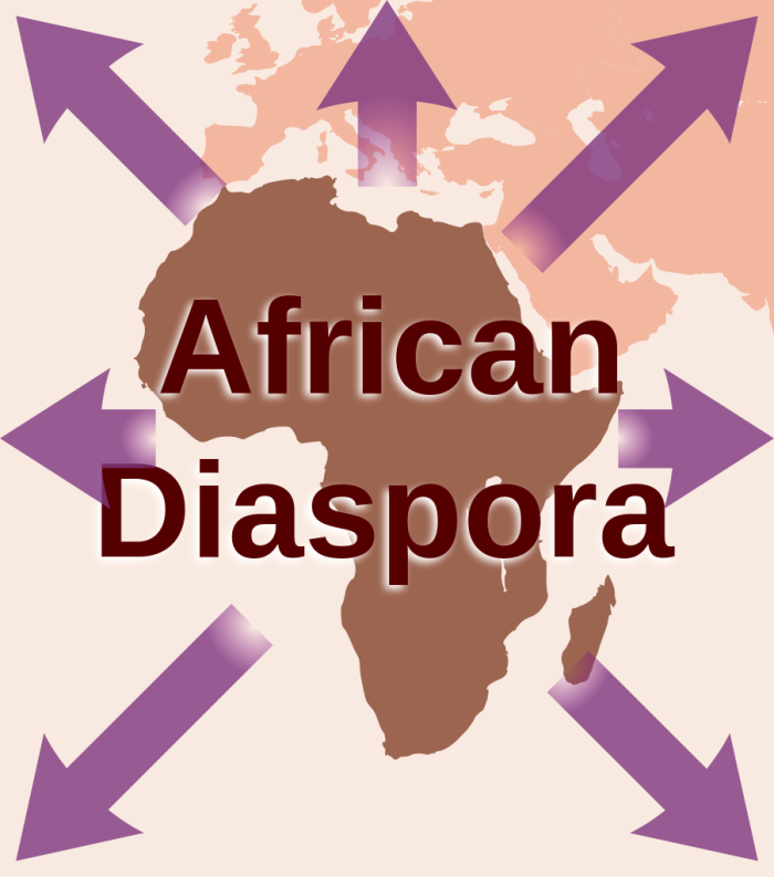 Did you know the African Diaspora are also inspiring innovation?