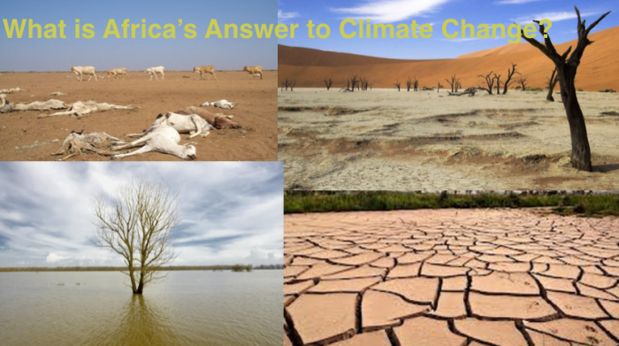 Did You Know the Paris Agreement could be bad forAfrica?