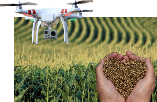 Did You Know drones and better seeds will feed Africa and the world?