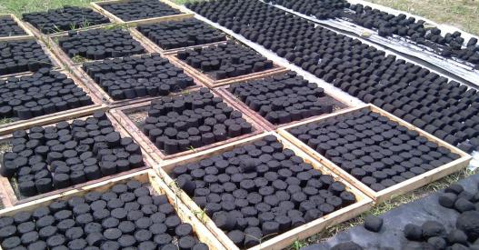 charcoal briquette cameroon.png