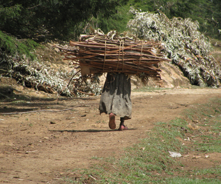 Woman_Carrying_Bundle_of_Wood,_Ethiopia.jpg