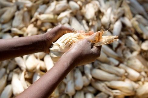 corn husks africa.jpg